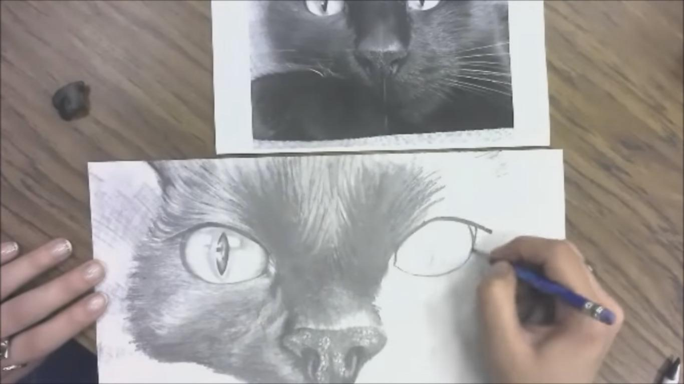 Beautiful Pencil Drawing of a Cat Portrait (Speed Drawing)